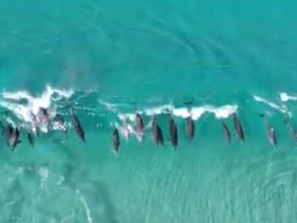 Atemberaubende Aufnahmen von der Küste Australiens.
