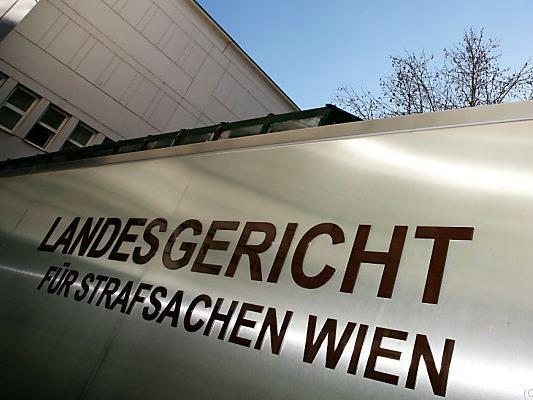 Ärztin in Wien als Sozialbetrügerin verurteil