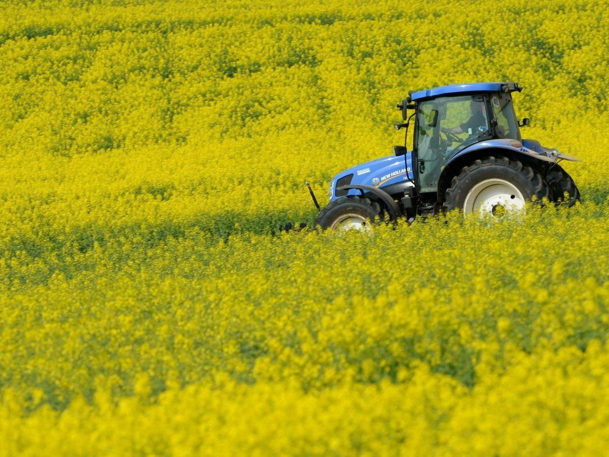 Ein 62-jähriger Landwirt erlitt nach einem Unfall mit einem Häcksler tödliche Verletzungen.