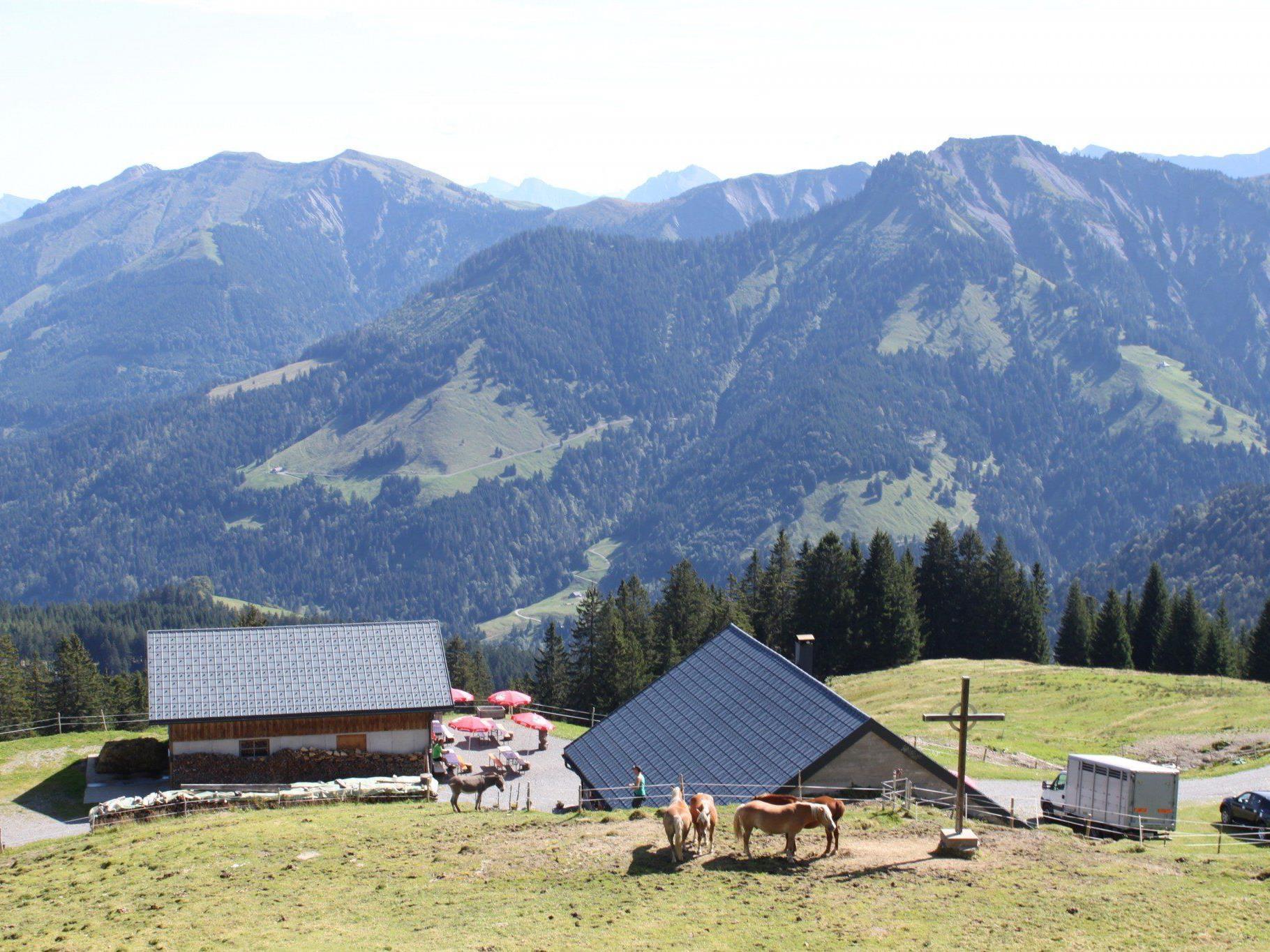 Termine Alpmessen Fraxern: Alpe Hohe Kugel, Sonntag, 20. Juli, 11 Uhr. Alpe Maiensäss, Sonntag, 17. August, 11.30 Uhr.