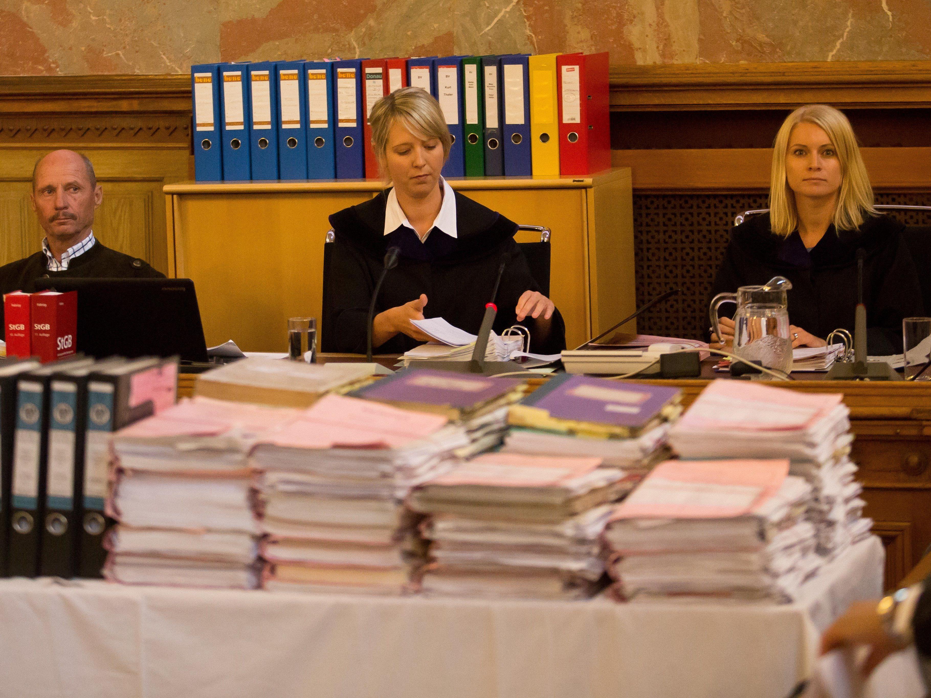 Der Schöffensenat unter Vorsitz von Christina Rott soll sich am Freitag eingehend beraten.