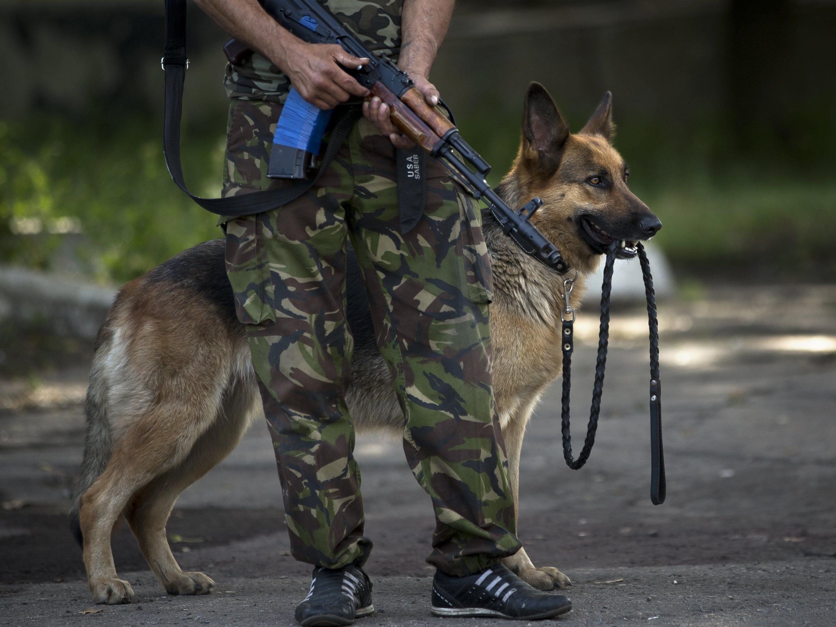 Bürgermeister von Krementschug erschossen - Bürgermeister von Lwiw unverletzt.