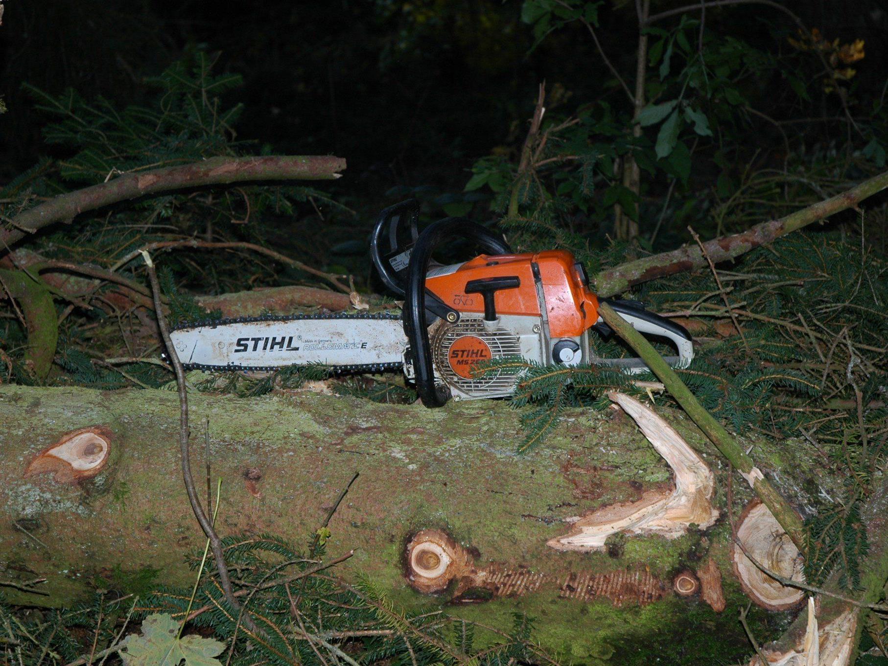 Für den Forstarbeiter kam jede Hilfe zu spät.