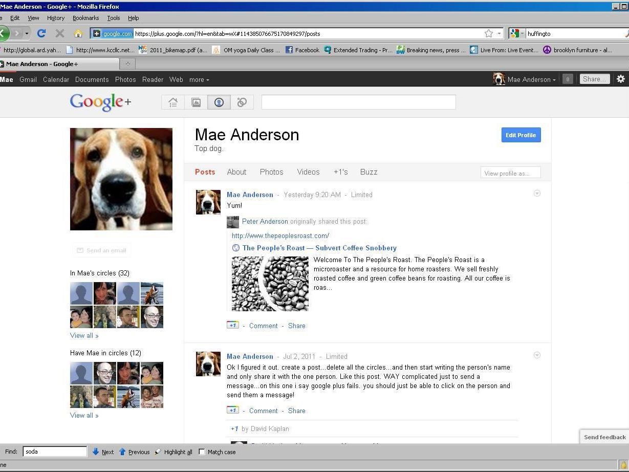 Zum Start von Google+ 2011 hatte es heftige Kritik gegeben, weil Google bei der Anmeldungen einen Klarnamen verlangte.