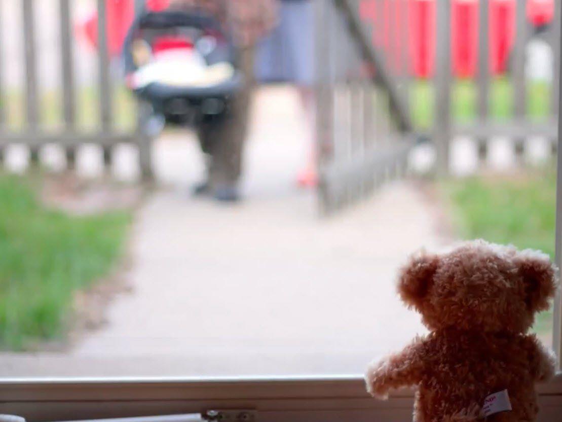 Kleiner Teddy wartet sehnsüchtig auf seinen neuen besten Freund.
