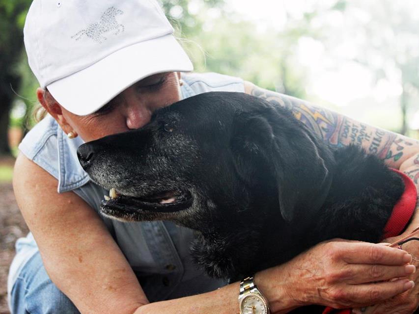Bei Helen Rosburg fand Hundedame Lady ihr Glück.