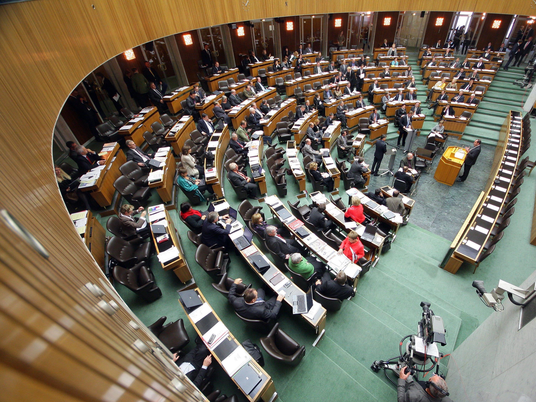 Niessl fordert Verkleinerung von National- und Bundesrat.