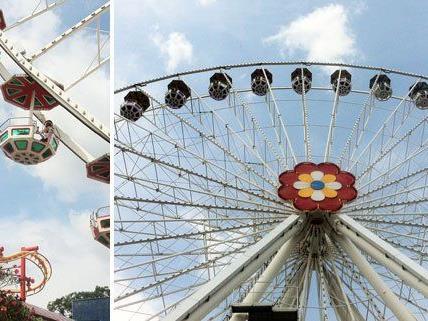 Das Blumenrad liefert eine 360-Grad-Aussicht über Wien.