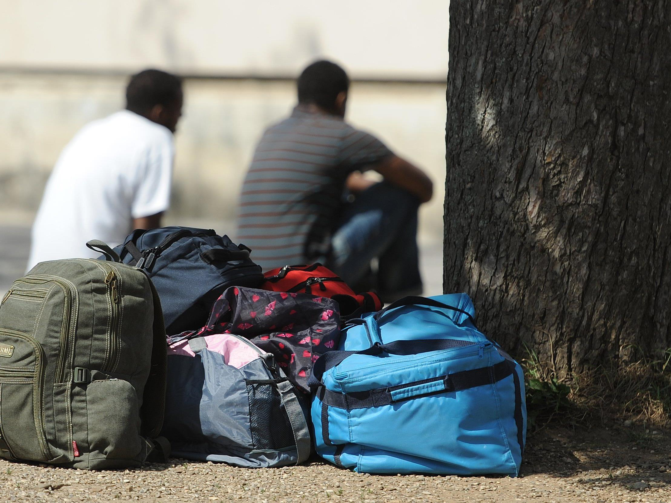 Sollen mehr Asylwerber aufgenommen werden?