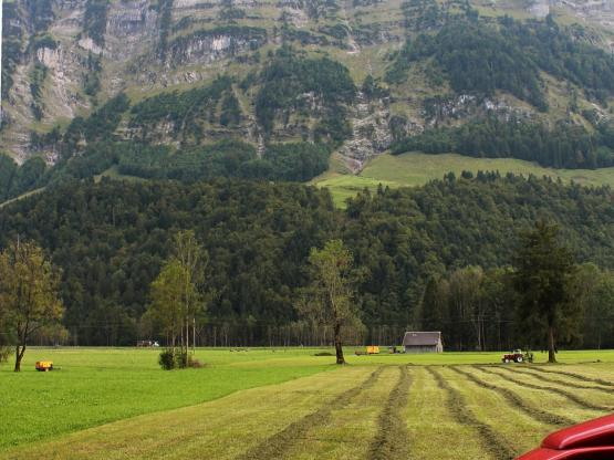 In Schnepfau soll in den kommenden zwei Jahrzehnten Kies abgebaut werden. Projektbetreiber Hermann Rüf ist zuversichtlich.