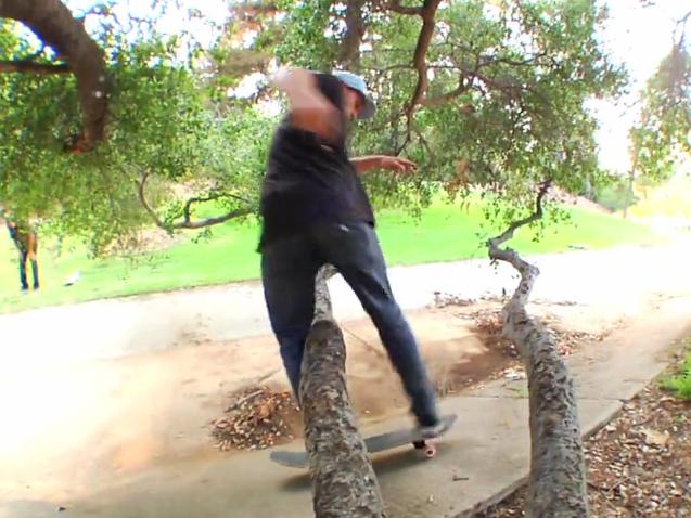 Snowboarder Scott Stevens macht auch auf dem Skateboard eine gute Figur.