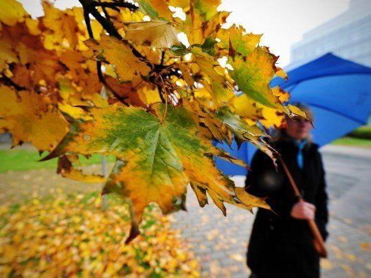 Kühleres Herbstwetter erwartet uns