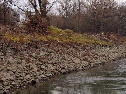 Verschmutztes Grundwasser gelangte in NÖ in die Donau.