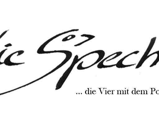 Die Spechte im Alten Kino Rankweil.