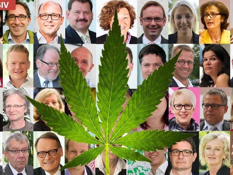Cannabis-Legalisierung? Wie stehen die Landtagsabgeordneten dazu.