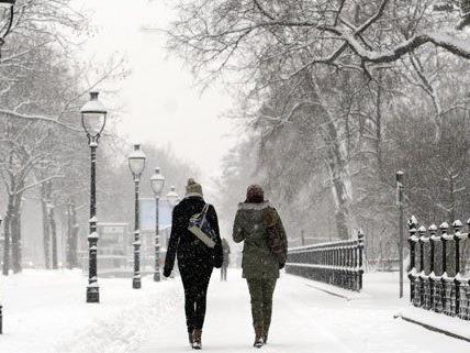 Weiße Weihnachten wird es 2014 in Wien höchstwahrscheinlich nicht geben.