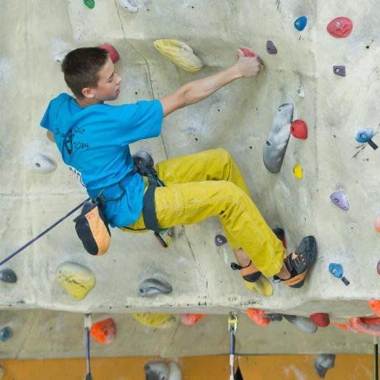 130 Volksschüler waren beim Klettern mit dabei.