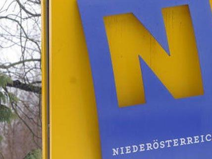 Am 25. Jänner finden in NÖ die Gemeinderatswahlen statt.