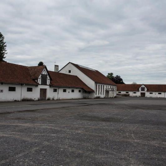 Die Versteigerungshalle in Dornbirn-Schoren wird zum Teil neu errichtet. Die Pläne sollen im Frühjahr stehen.