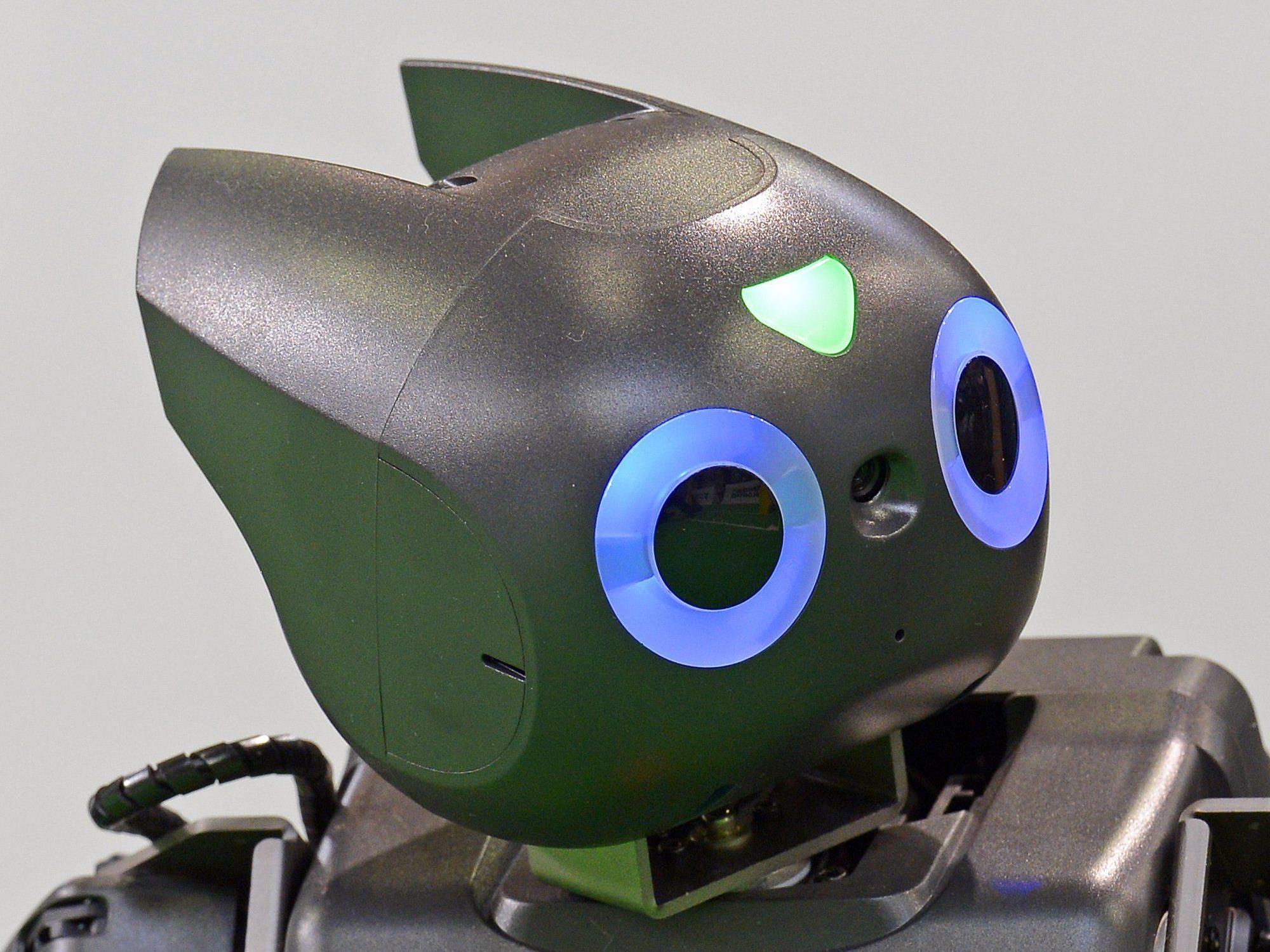 In einem neuen japanischen Hotel soll das Personal aus Robotern bestehen.