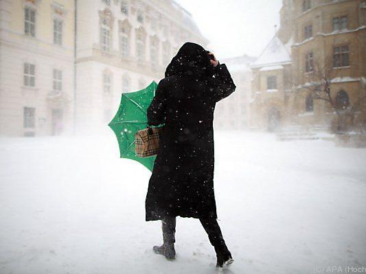 Wiener City wurde zur Winterlandschaft