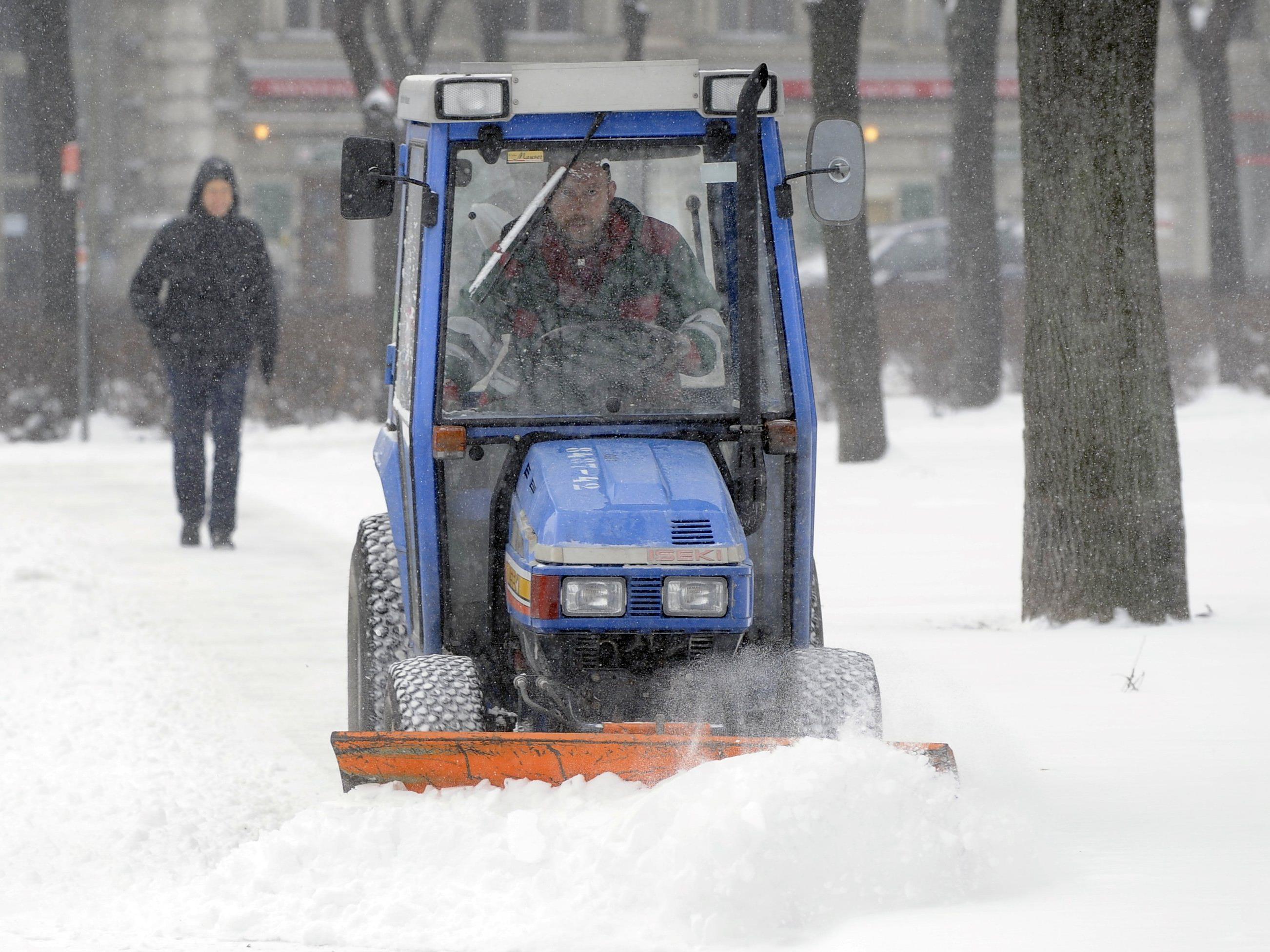 Schnee hält Räumdienste in Wien auf Trab.