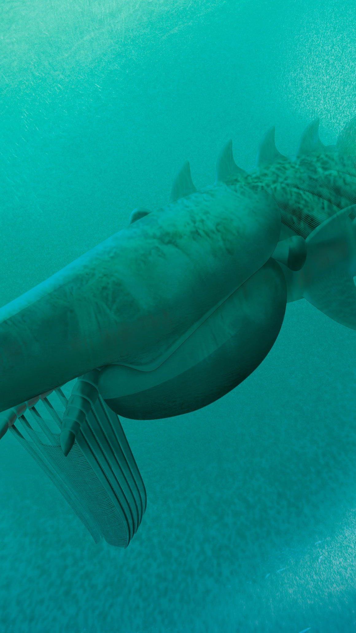 In den Meeren der Urzeit: Aegirocassis benmoulae war mit Fangkorb auf Nahrungssuche.