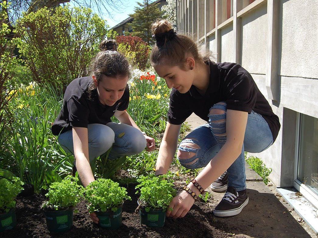 Ein neuer Schulgarten im Marienberg wurde eröffnet