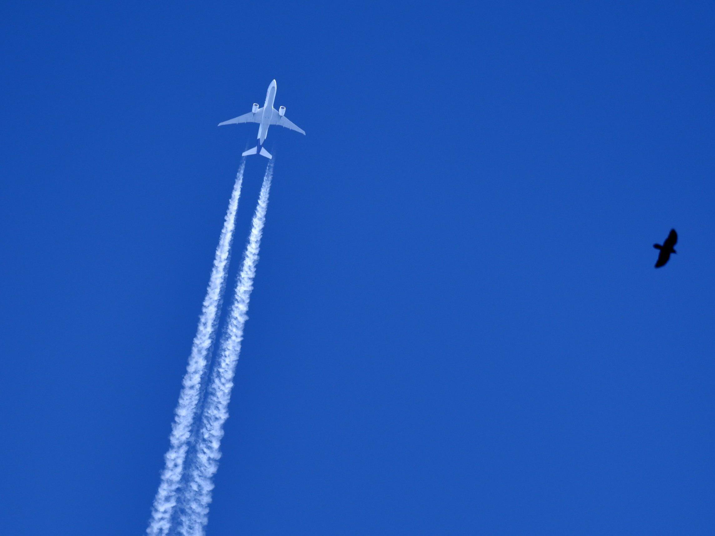 Kondensstreifen von Flugzeugen sind Ursache von Verschwörungstheorien.