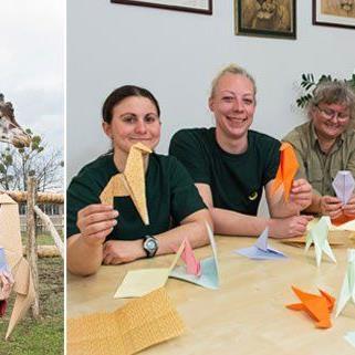 Dagmar Schratter setzt auf die Unterstützung von Giraffen-Pflegern und Besuchern beim Origami Falten