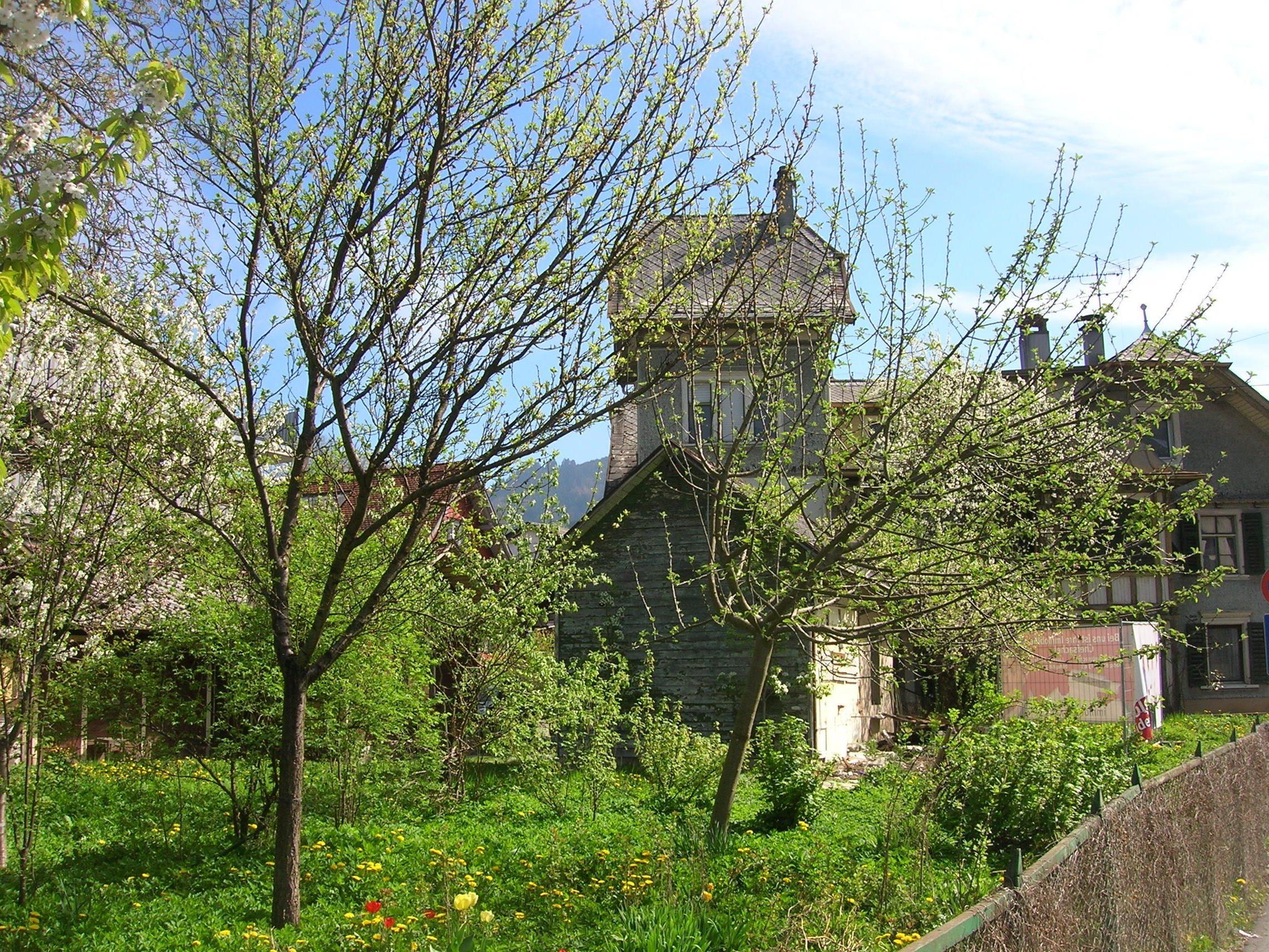 Kleinod inmitten der Stadt: Garten des Kalb-Hauses.