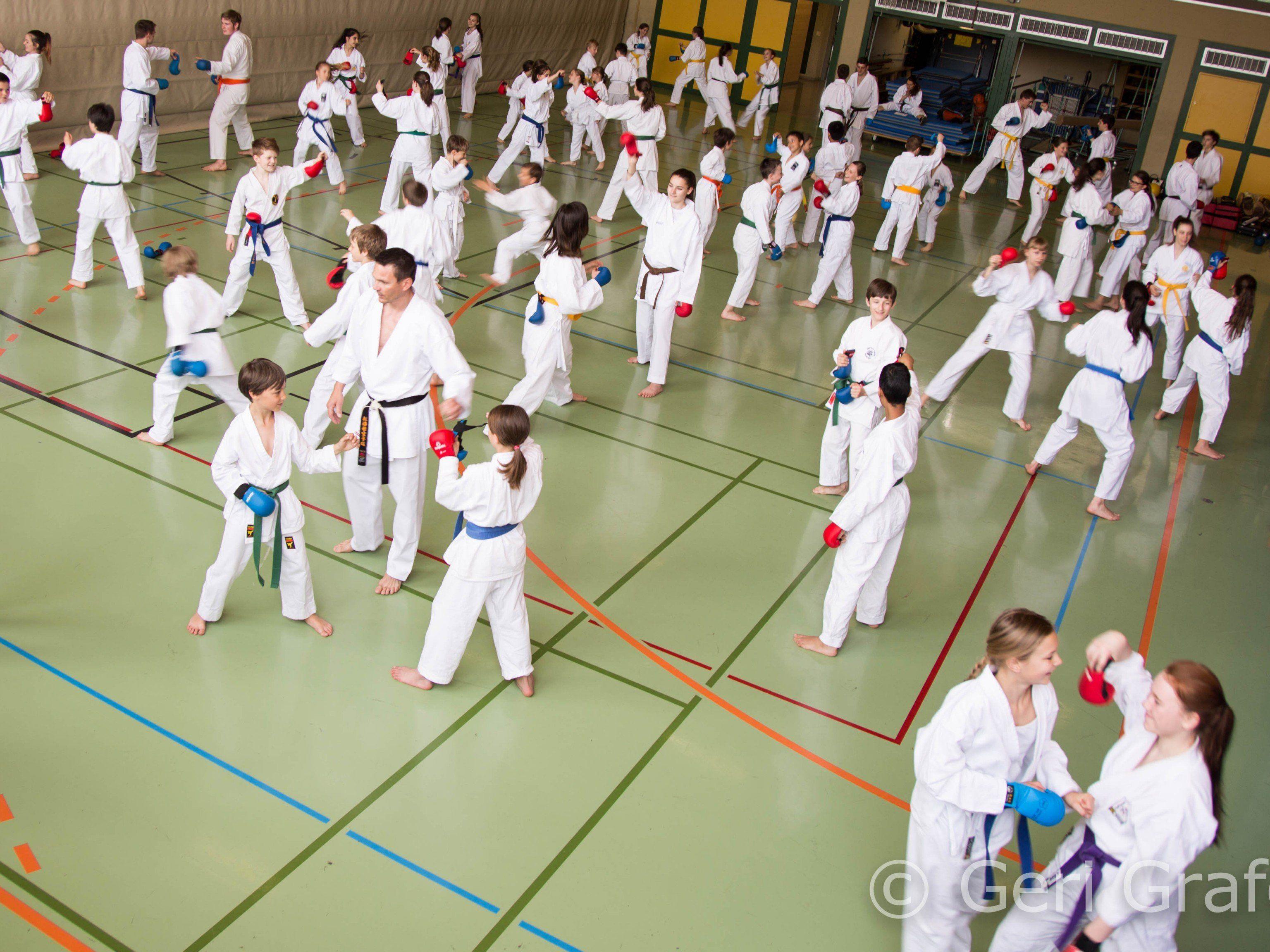 Karate noch populärer und lukrativer machen