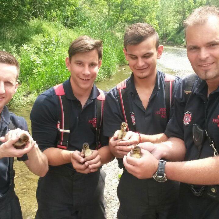 Die Feuerwehrmänner nach der Rettung der Entenkinder.