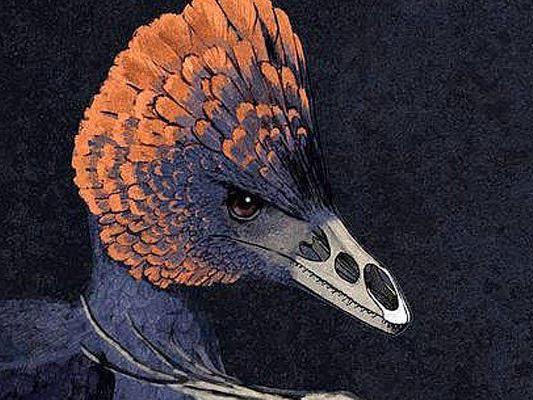 Künstlerische Darstellung eines vogelähnlichen Anchiornis-Dinosauriers.