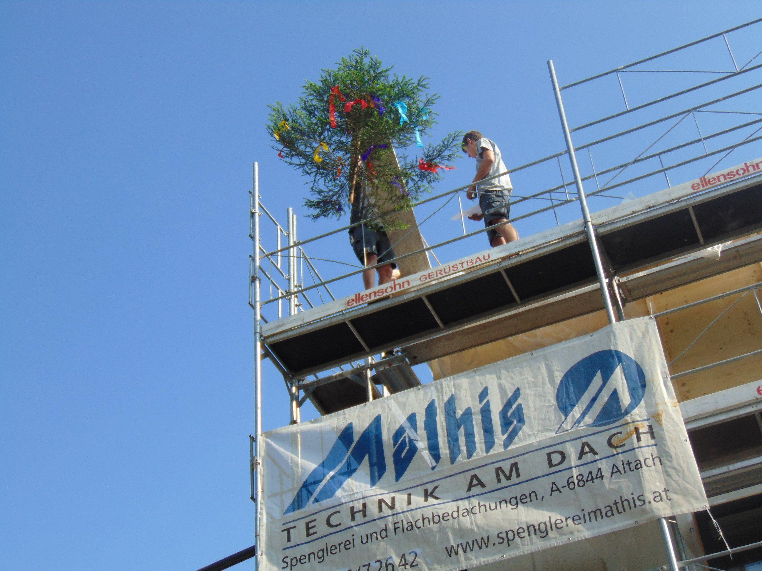 Der Firstbaum bei der VMS Altach wurde feierlich aufgestellt