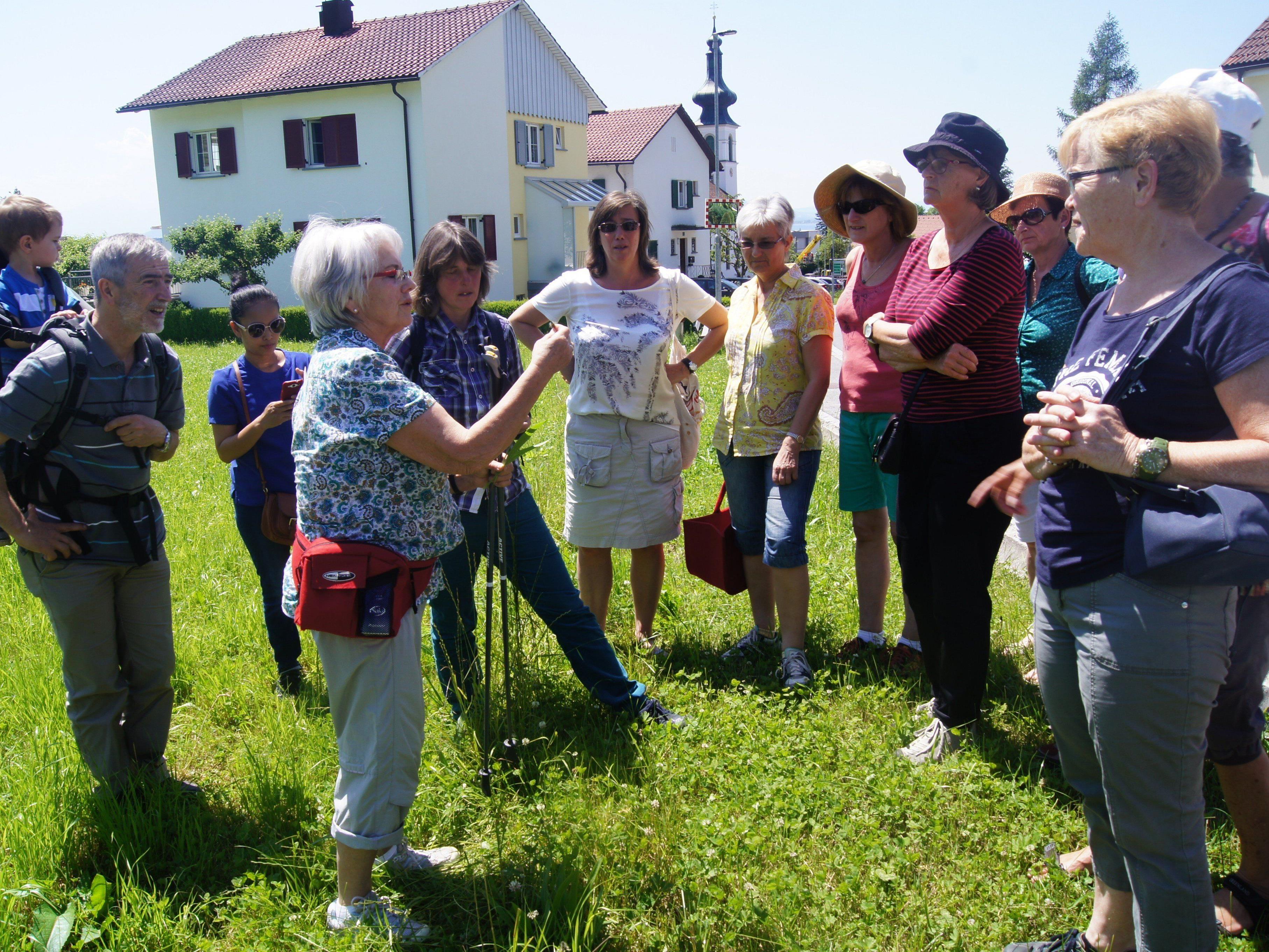 """Bei der """"Kräuterwanderung"""" mit Herma Schmid wurde die Artenvielfalt der Natur zum ganz besonderen Erlebnis."""