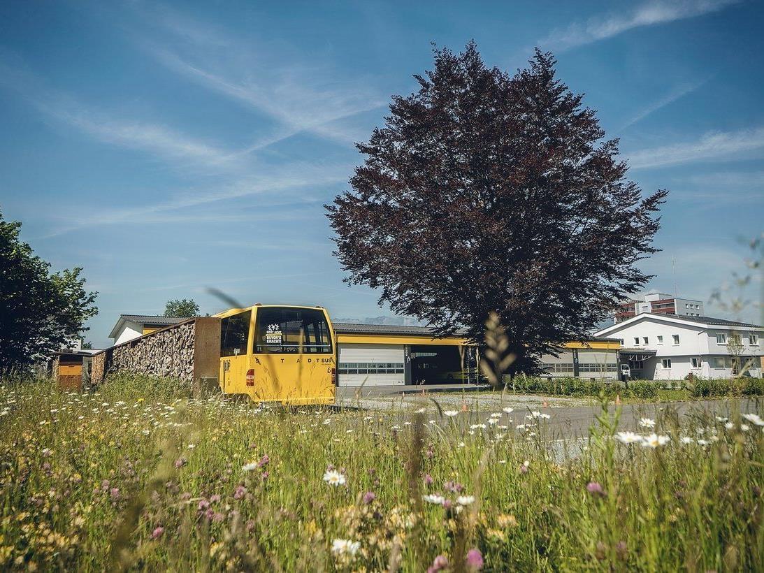 Eine gelungene Verbindung von Arbeit und Natur am Betriebsgelände von Niggbus.
