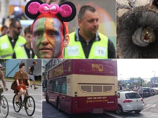 Die Leserreporter von VIENNA.at berichten von den unterschiedlichsten Vorfällen und Events.