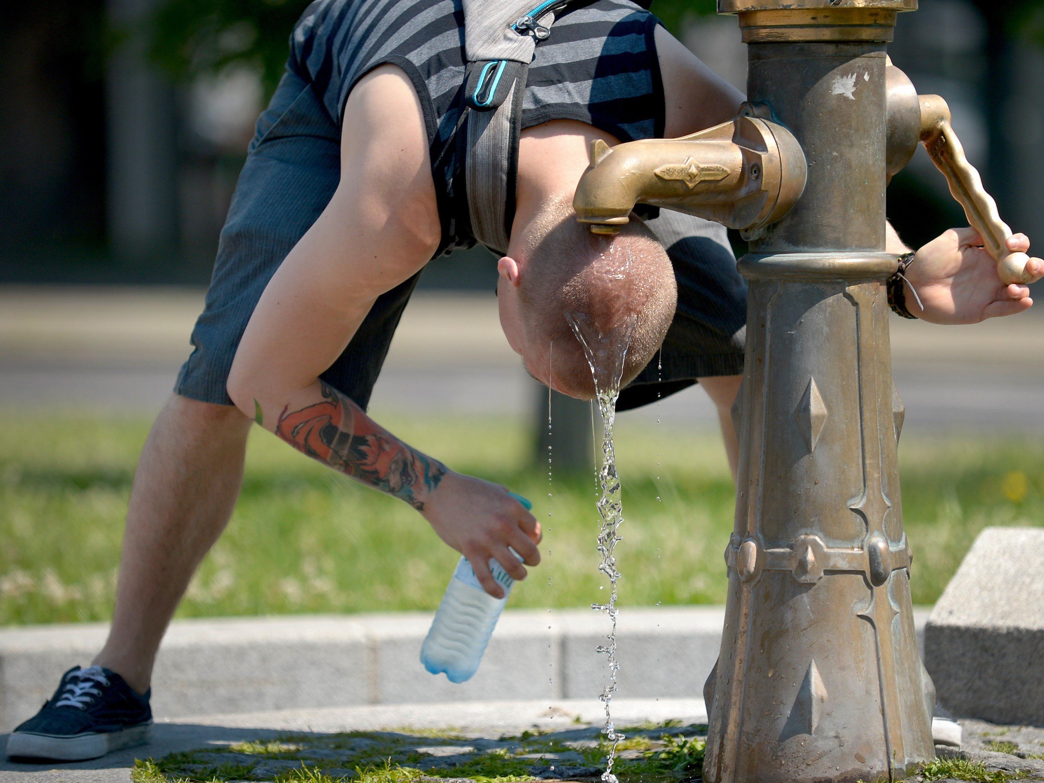 Die Hitzewelle hält vor allem die Wiener Rettung auf Trab.