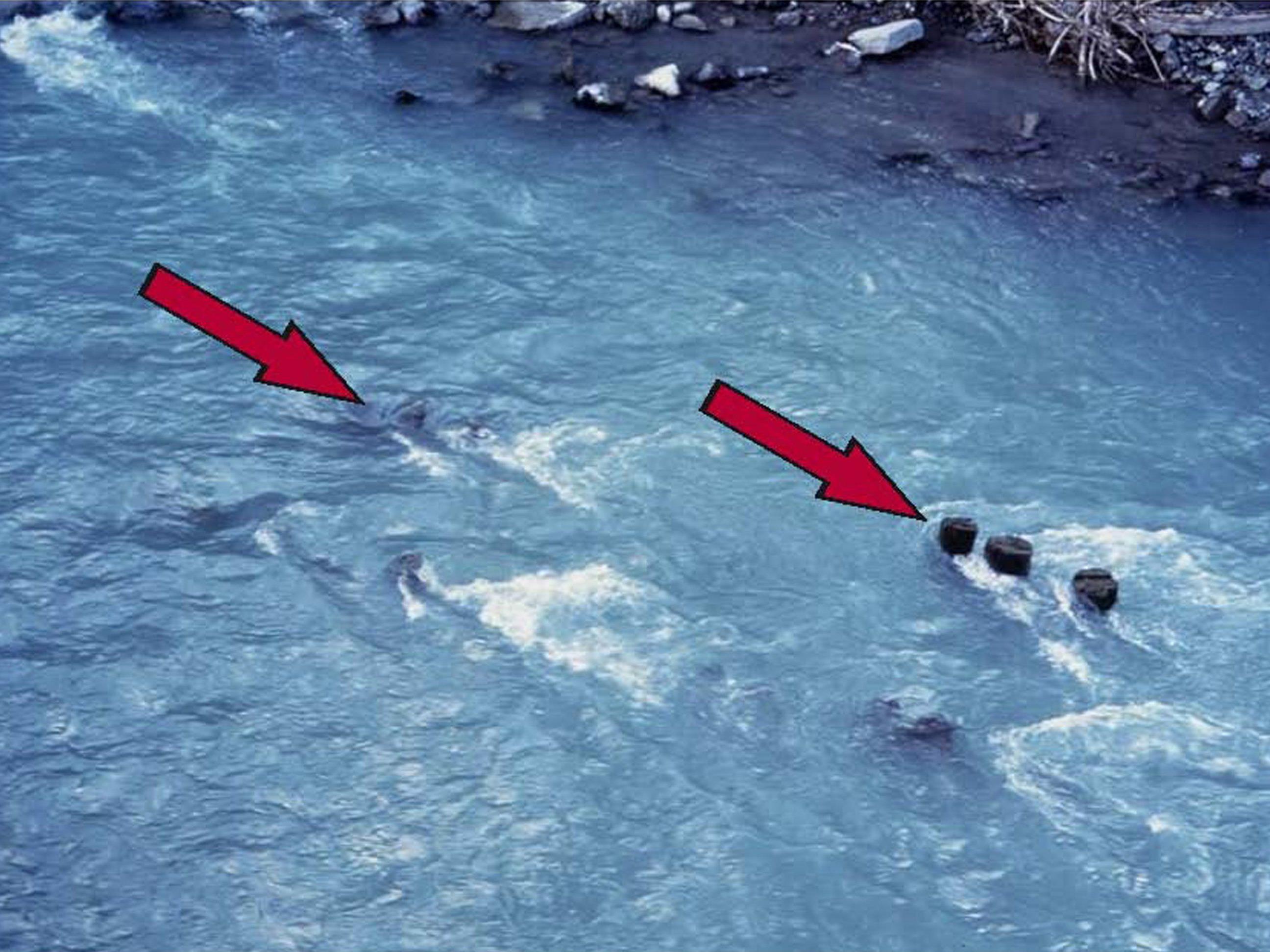 Große Vorsicht ist bei Wassersprüngen in unbekannte Tiefen angesagt.