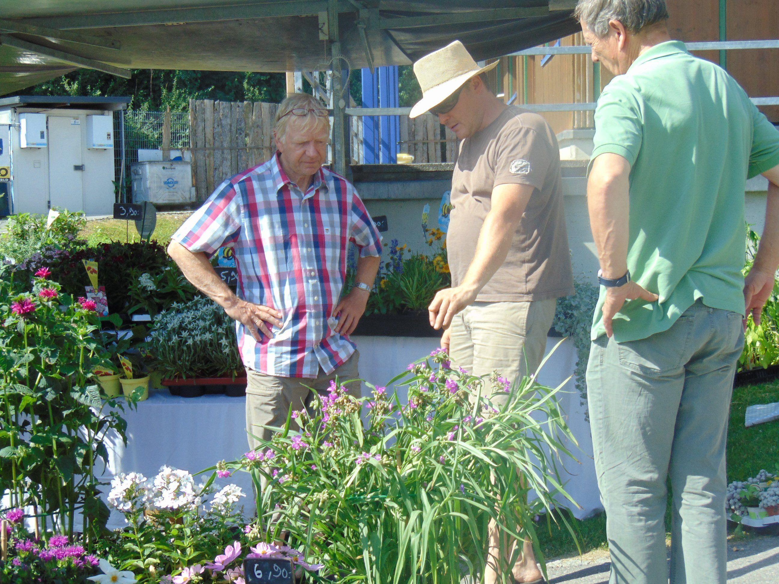 Die Besucher informierten sich über bienenfreundliche Pflanzen und Sträucher