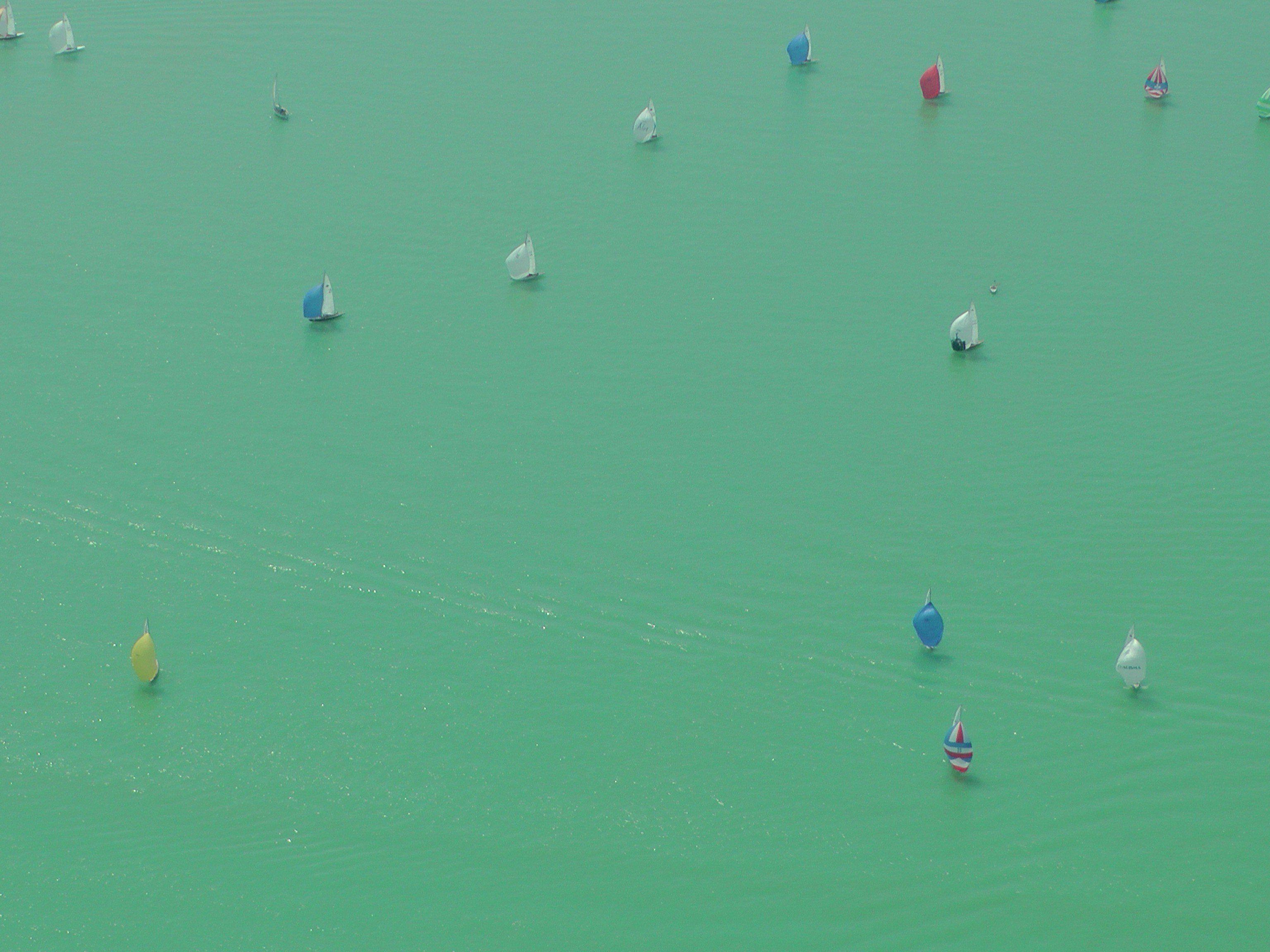 Das Wasser färbt sich grün.