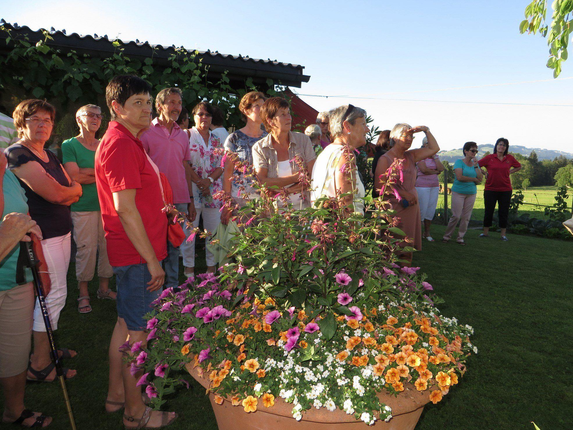 Gartenbehung in Alberschwende