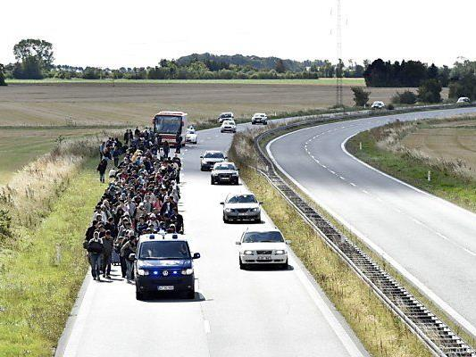 Migranten auf dänischer Autobahn am Weg in Richtung Schweden