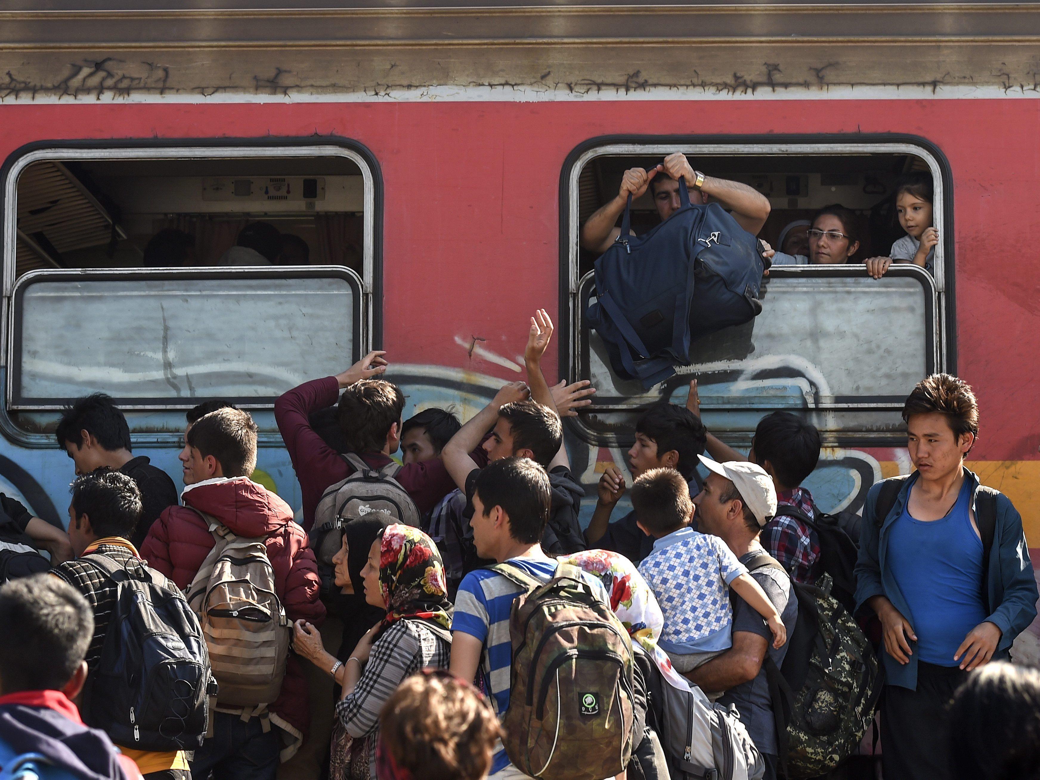 """Von """"Wirtschaftsflüchtlingen"""" über """"ruhige Flecken in Syrien"""": Experten halten wenig von gängigen Behauptungen."""