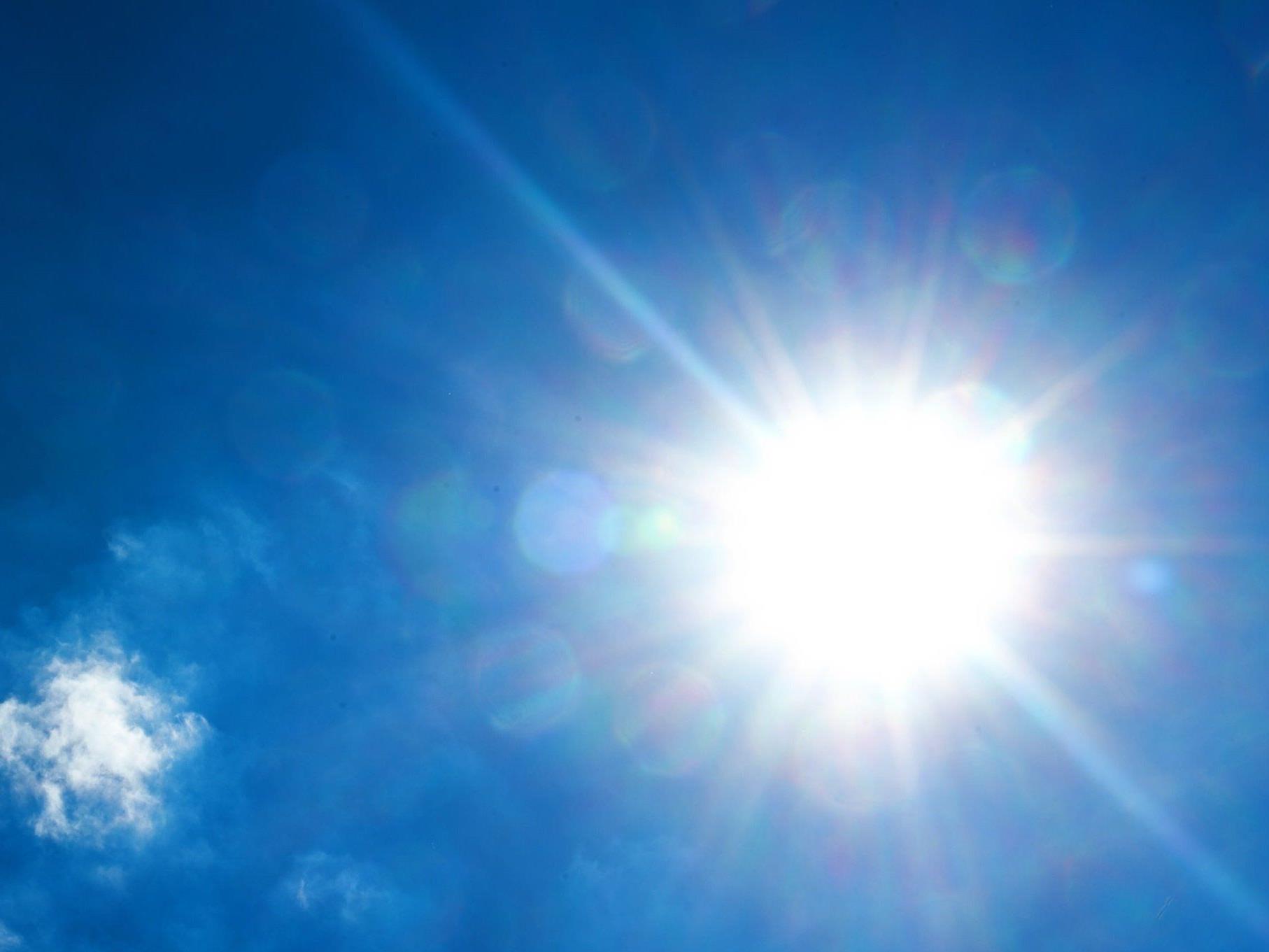 In Südafrika herrschen zurzeit sengende Temperaturen