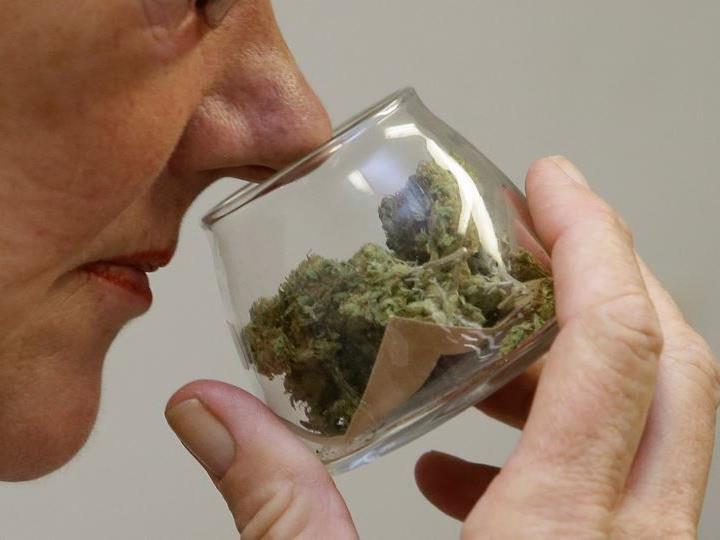 Cannabis-Präparate werden in Kroatien erlaubt.
