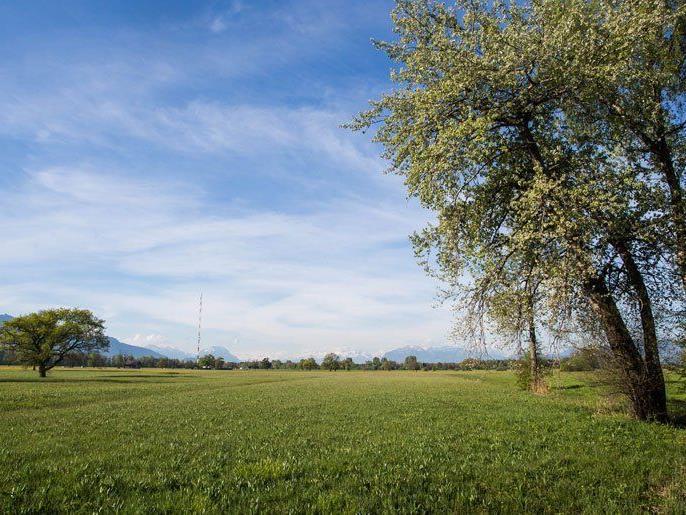 Gesucht: Der schönste Ort Österreichs. In Vorarlberg stehen drei Vorschläge zur Auswahl.