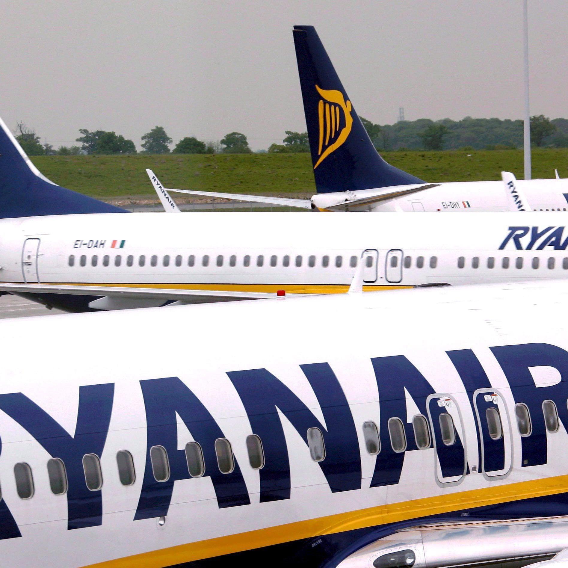 Billigfluglinie hält Vervierfachung der Passagierzahlen möglich - Neue Flughäfen im Visier.