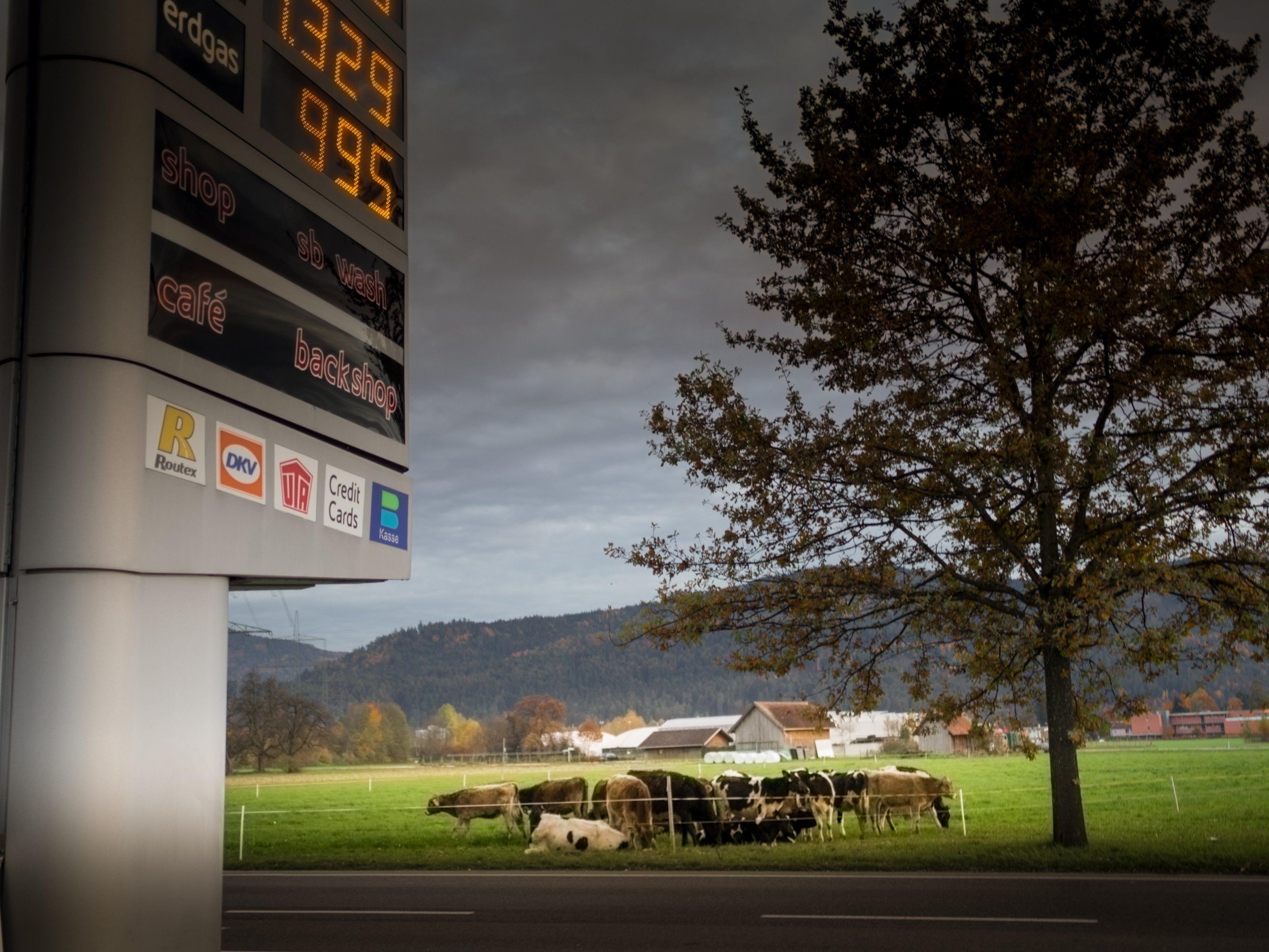 In Vorarlberg wird immer mehr Bodenfläche verbaut - und das Verkehrsaufkommen steigt mit.